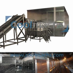 Fruit Fluidized Quick Freezer Machine/Food Processing Equipment pictures & photos