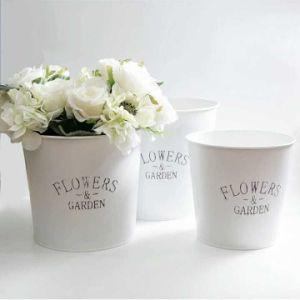 Hot Sale Iron Flower Pot pictures & photos