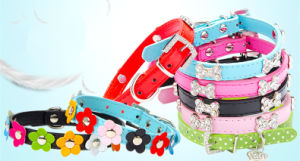 Pet Dog Cat Puppy Fashion Collar (cl3004) pictures & photos