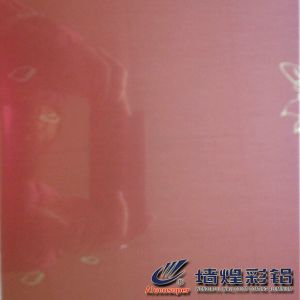 Colored Film Steel Sheet/Plate VCM for Icebox pictures & photos