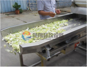 FT-1800 Vibration Lettuce Water Erasing Machine Dewater Machine pictures & photos