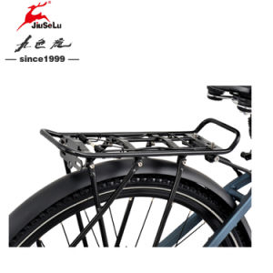 Blue 700C Aluminum Alloy 36V Lithium Battery E-Bike pictures & photos