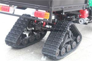 Four Head Lamp 250cc ATV with Snow Tire Big Storage pictures & photos