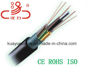 Gysta Optical Fiber Cable/Computer Cable/Data Cable/Communication Cable/Audio Cable/Connector pictures & photos