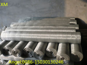 Galvanized Square Iron Wire Mesh pictures & photos