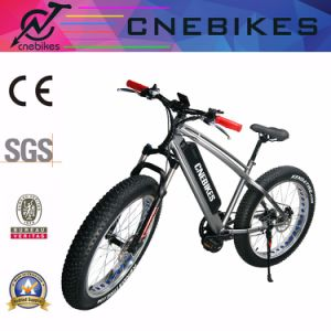 Fat Tire Electric Snow Bicycle with 48V 750W MID Drive Motor pictures & photos