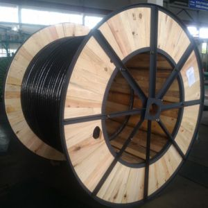 Underground Steel Wire Armored SWA XLPE Insulated Copper Electrical Cable pictures & photos