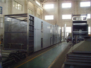 Food Waste Drying Machine Mesh Belt Dryer in Hot Sale