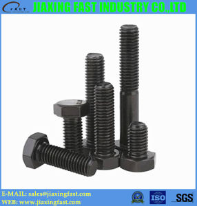 Hex Head Bolts pictures & photos