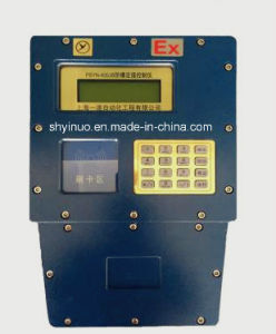 Single Channel Batch Controller (PSYN-400) pictures & photos