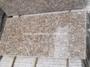 Natural Stone Bluestone Granite Floor Tile with High Quality pictures & photos