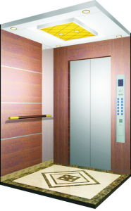Germany Office Home Villa Passenger Elevator