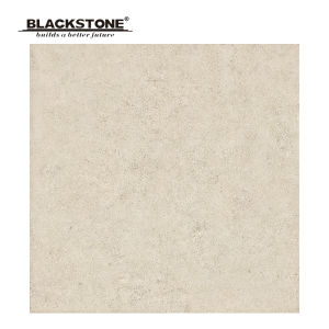 New Design 600X600mm Rustic Flooring Tiles for House Decoration (SG6093) pictures & photos