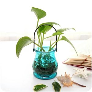 Factory Directly Provide Decoration Vase with Best Price pictures & photos