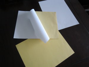 Cast Coated Paper/Yellow Release Liner