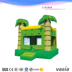 Leader Manufacturer High Quality Inflatable Jumping Castle Little Inflatable Bouncer pictures & photos