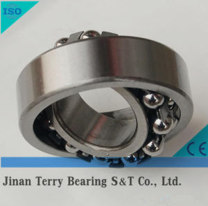 The High Quality Self-Aligning Ball Bearing (2204)
