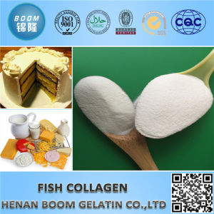 Beauty 100% Fish Skin/Scale Collagen Peptide pictures & photos