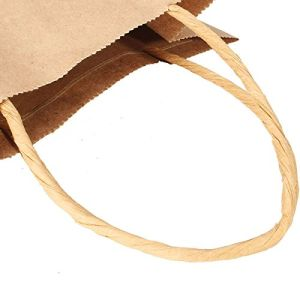 Brown Kraft Paper Bag Paper Carrier Bags Recyclable Paper Bag Shopping Party Gift Bags pictures & photos