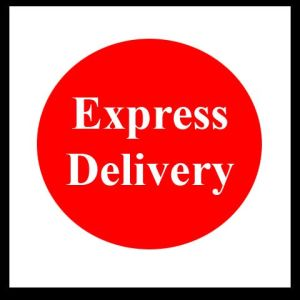 Express Delivery, DHL, UPS, FEDEX, to Europe