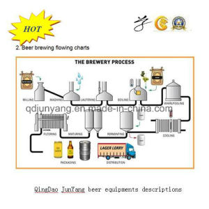 1000L 304 Stainless Steel Beer Fermenting Equipment pictures & photos
