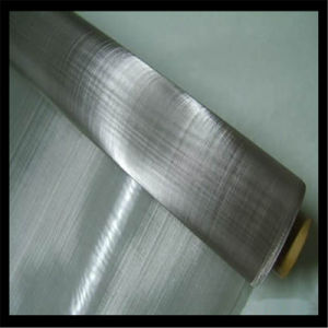 316ss Plain Weave Stainless Steel Wire Mesh pictures & photos