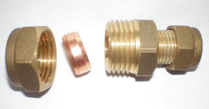 Brass Straight Coupling with Compression End (AV7001) pictures & photos