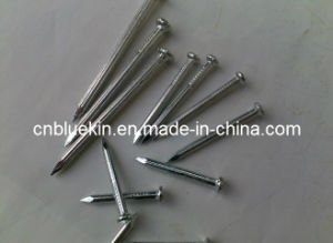Concrete Steel Nails with Galvanized Surface