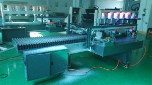 Fare Price Acrylic/LED Light Guide/Organic Glass/Plastic Products Processing Polisher Machine pictures & photos