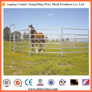 Cheap Galvanized Cattle Yards (Factory) pictures & photos