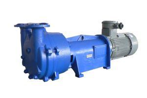 2BV6111 One/Single Stage Water/Liquid-Ring Vacuum Pump