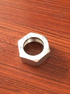 Stainless Steel DIN2999 Pipe Fittings Hex Nut pictures & photos