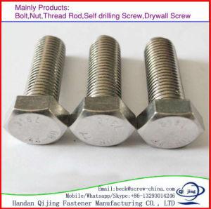 Wholesale Galvanized Hex Head Bolt M6-M100 pictures & photos