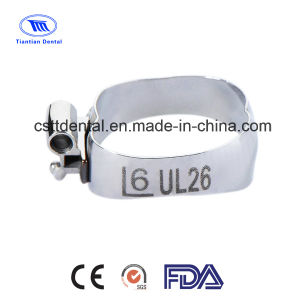 Orthdontic Roth Bands for OEM/ODM
