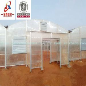 Arch Type PC Sheet Tunnel Greenhouse for Vegetables Growing pictures & photos
