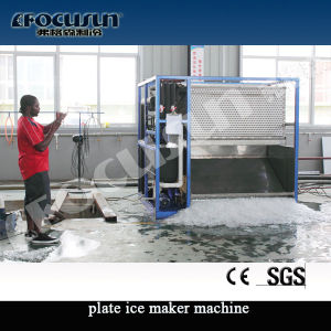 High Quality Plate Ice Making Plant pictures & photos