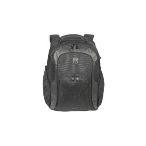 Laptop Business Bag Travel Sports Hiking Backpack pictures & photos