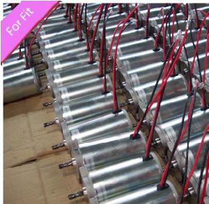 300W Electric 12V Brush DC Motor