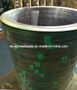 The Good Quality of 316 (L) Graphite Spiral Wound Gaskets (SUNWELL) pictures & photos