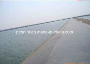 HDPE Geomembrane for Small Garden Lake pictures & photos
