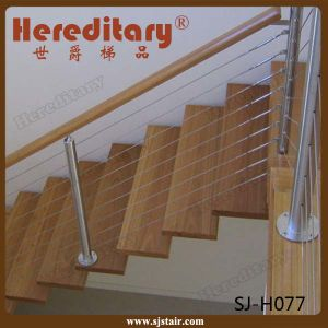 Stainless Steel Outdoor Staircase Deck Handrail Ideas (SJ-S064) pictures & photos