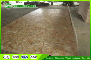 Competitive Price Waterproof OSB Board for Construction pictures & photos
