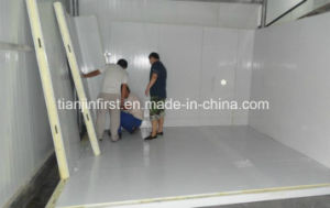 High Quality PU Sandwich Panel Cold Room/ Fruit and Vegetable Cold Storage pictures & photos