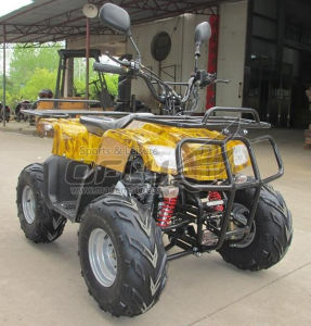 Real Product Quads ATV pictures & photos