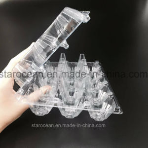 China Clear Pet Plastic Egg Box for Quail Eggs pictures & photos