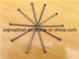 Hot Selling Polished/Galvanized Common Iron Nails From Factory pictures & photos