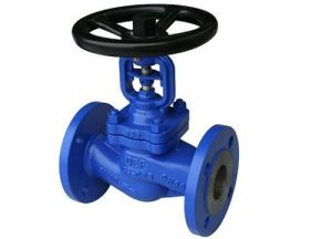 Bellow Sealed Wcb Globe Valve pictures & photos