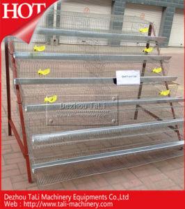 Hot Sales for Cage Quail Galvanized