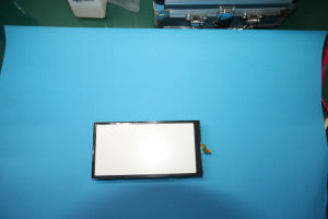 LED Backlight for FSTN LCD Module pictures & photos