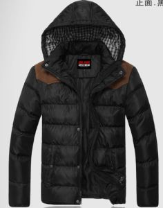 Mens Lasted Seal Fashion Casual High Quality Winter Jacket pictures & photos